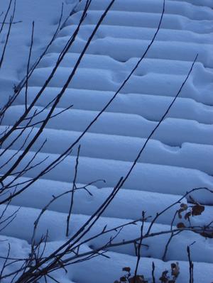 January_everyday_moments_2008_010